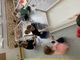 Galeria Tygryski zdjęcia z zajęć