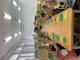 Galeria Wrzesień Kubusie